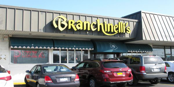 Branchinellis